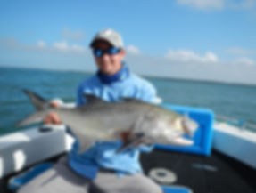 cairns fishing adventures, fishing charters cairns, Queensland, Australia,Threadfin Salmon cairns fishing adventur