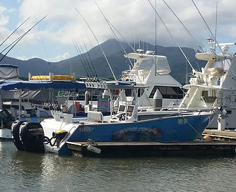 cairns fishing adventures, fishing charters cairns, Queensland, Australia, cairnsfishingadventures.com.au.jpg