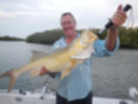 cairns fishing adventures, fishing charters cairns, Queensland, Australia, King Salmon