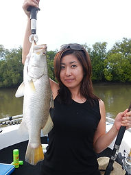 cairns fishing adventures, fishing charters cairns, Queensland, Australia, barramundi cairns fishing charters.JPG
