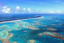 cairns fishing adventures, fishing charters cairns, Queensland, Australia, Great Barrier Reef Cairns Fishing.jpg