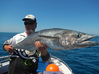 cairns fishing adventures, fishing charters cairns, Queensland, Australia, Spanish Mackerel cairns fishing adventur