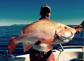 cairns fishing adventures, fishing charters cairns, Queensland, Australia, Nannygai cairns fishing adventures (3).j