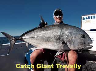 cairns fishing adventures, fishing charters cairns, Queensland, Australia, Giant Trevally jigging