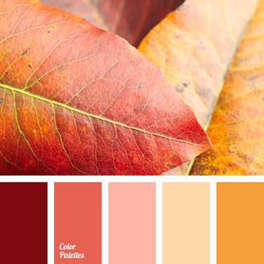 Autumn leaves 102