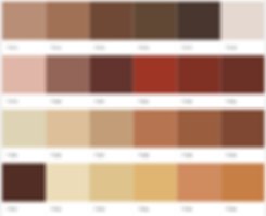 exterior color palette 4