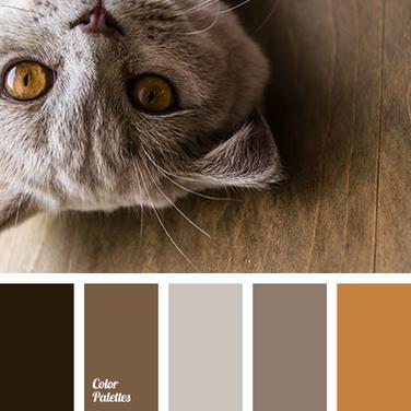 Cute cat 109