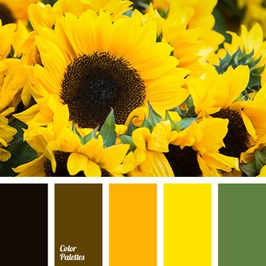 Sunflowers 107