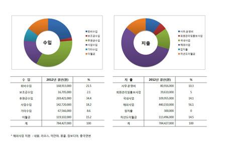 2012년 재정보고