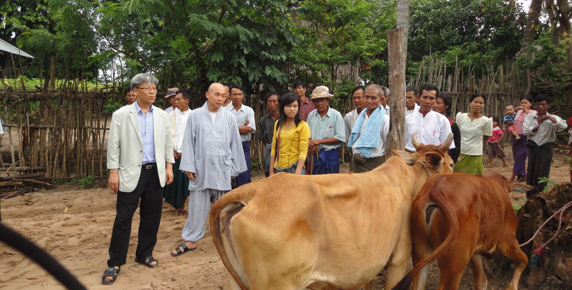 미얀마 카우뱅크 사업 (2).JPG