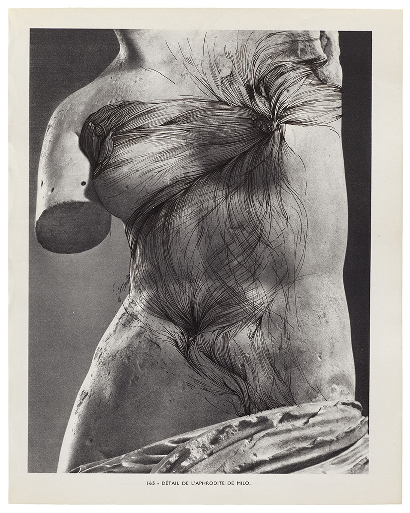 'MUSEE IMAGINAIRE, Plate 165', 2013