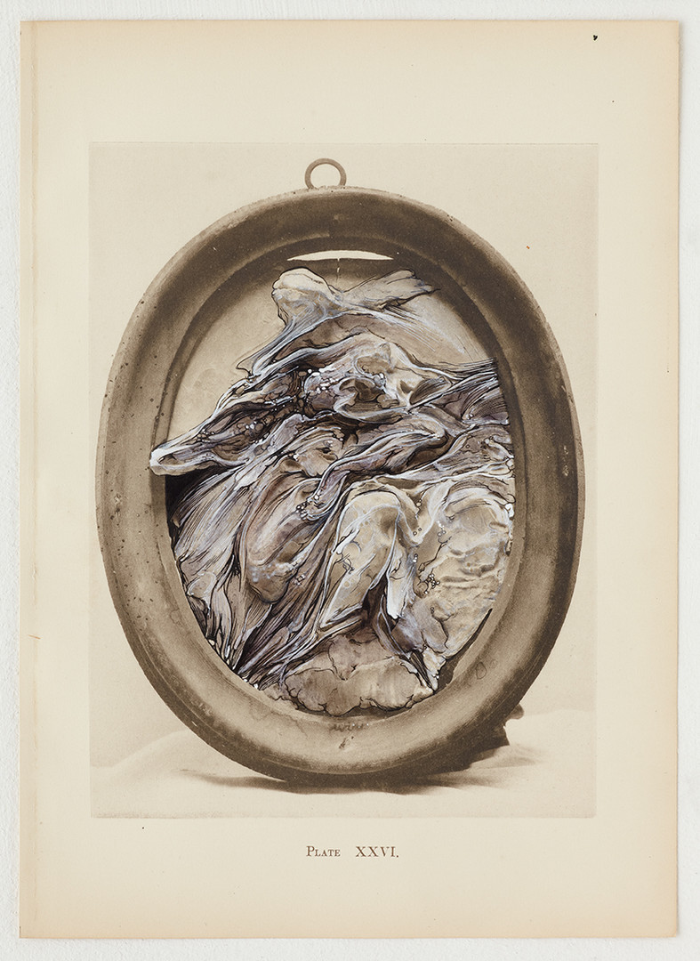 'Bernini and Other Studies' 2013