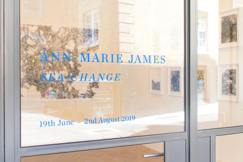 'Ann-Marie James: Sea Change'