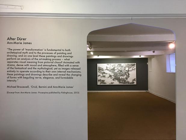 'Ann-Marie James: After Dürer'