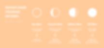 Copy of Copy of moonflowerprogramincome.