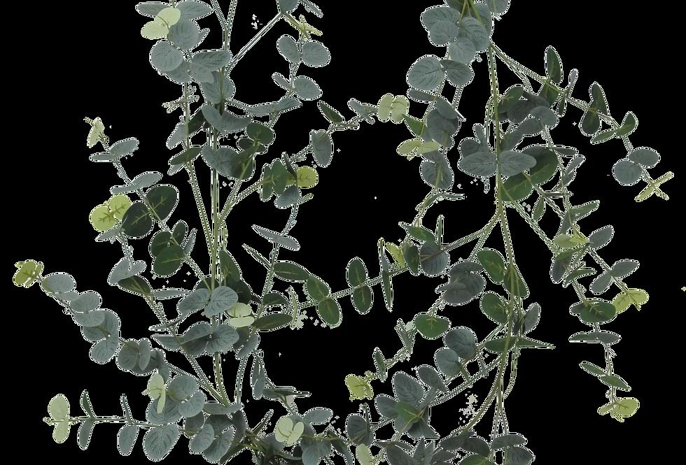 6FT Eucalyptus Garland