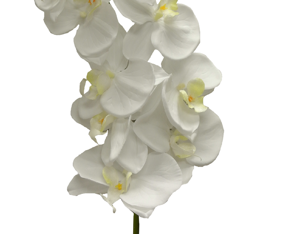 "42"" Orchid Spray Single Stem"