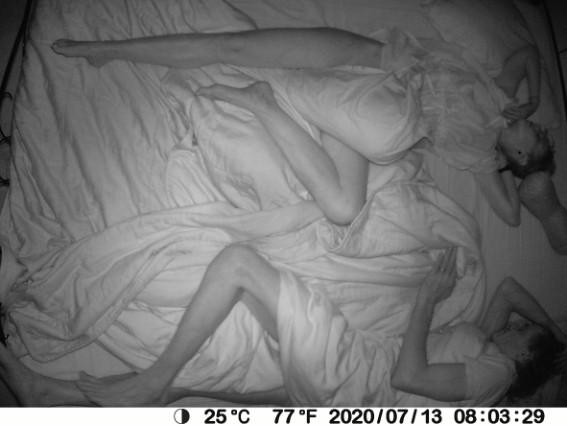 Sleeping beasts 1