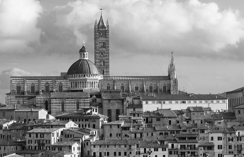 Siena Hori (11x17).jpg