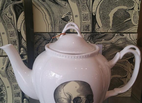Anatomical Curios TeaPot