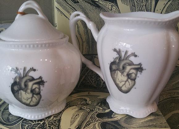Anatomical Milk Jug & Sugar Bowl