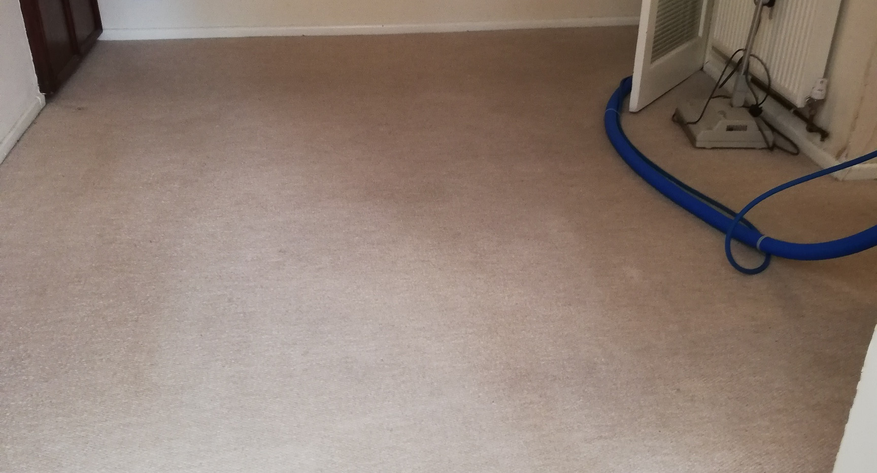 Northampton carpet clean