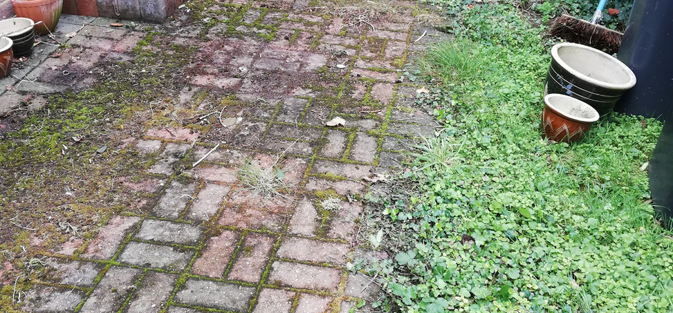 Patio cleaning Sharnbrook BEFORE