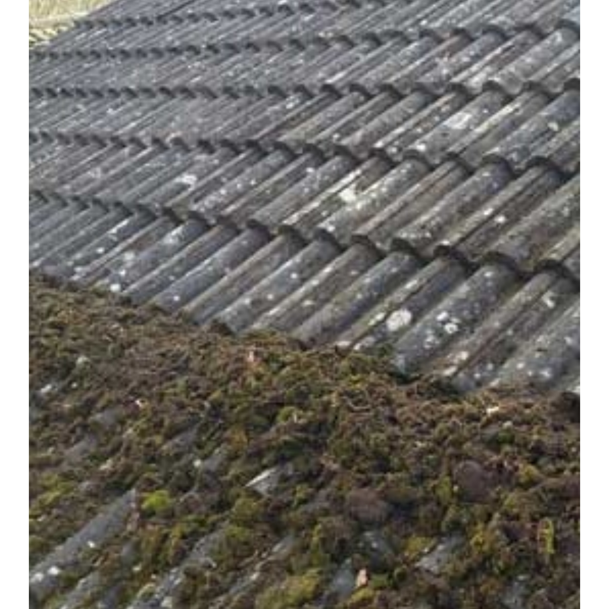 Roof moss removal Rushden
