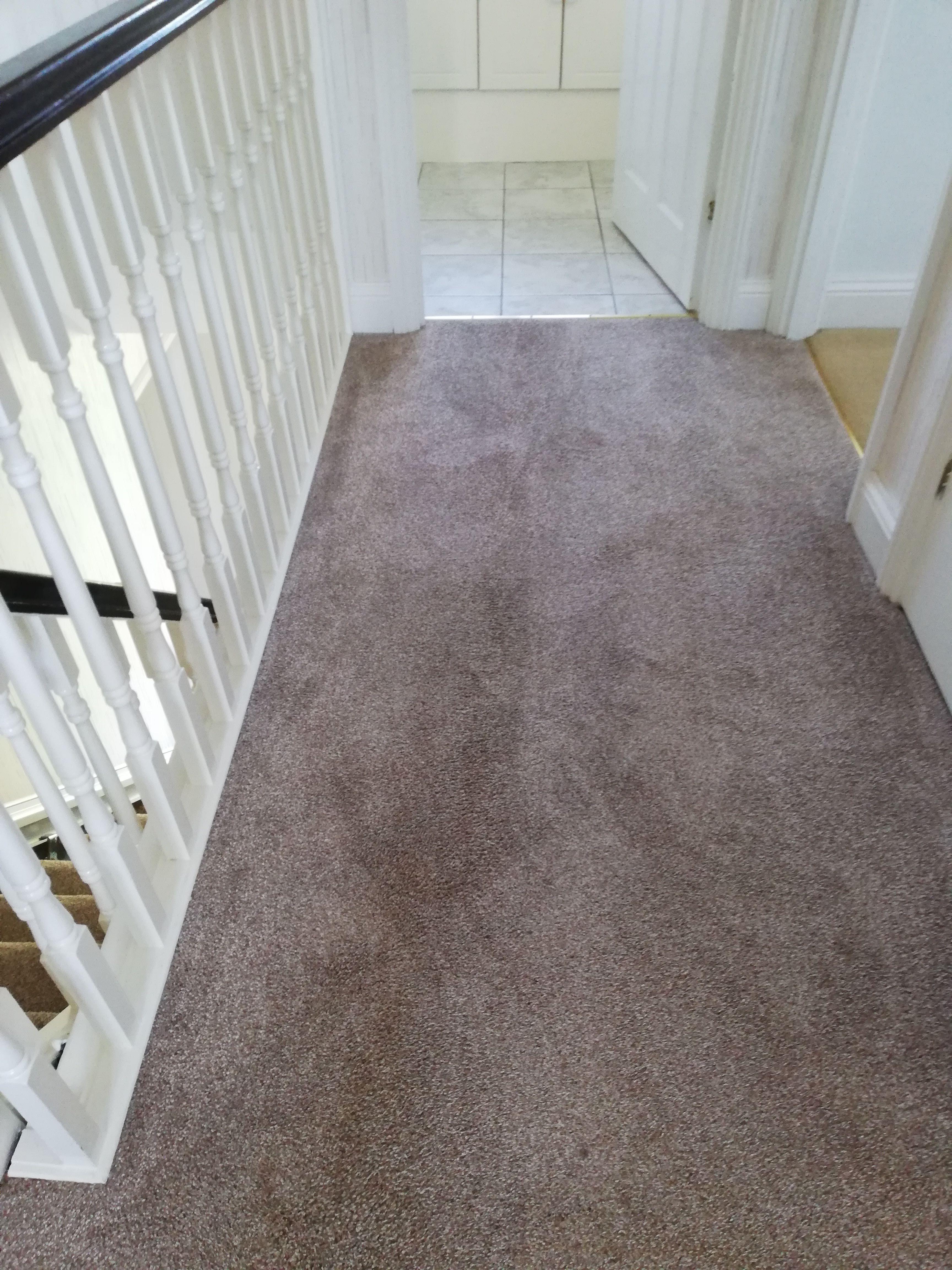 Carpet cleaning Rushden