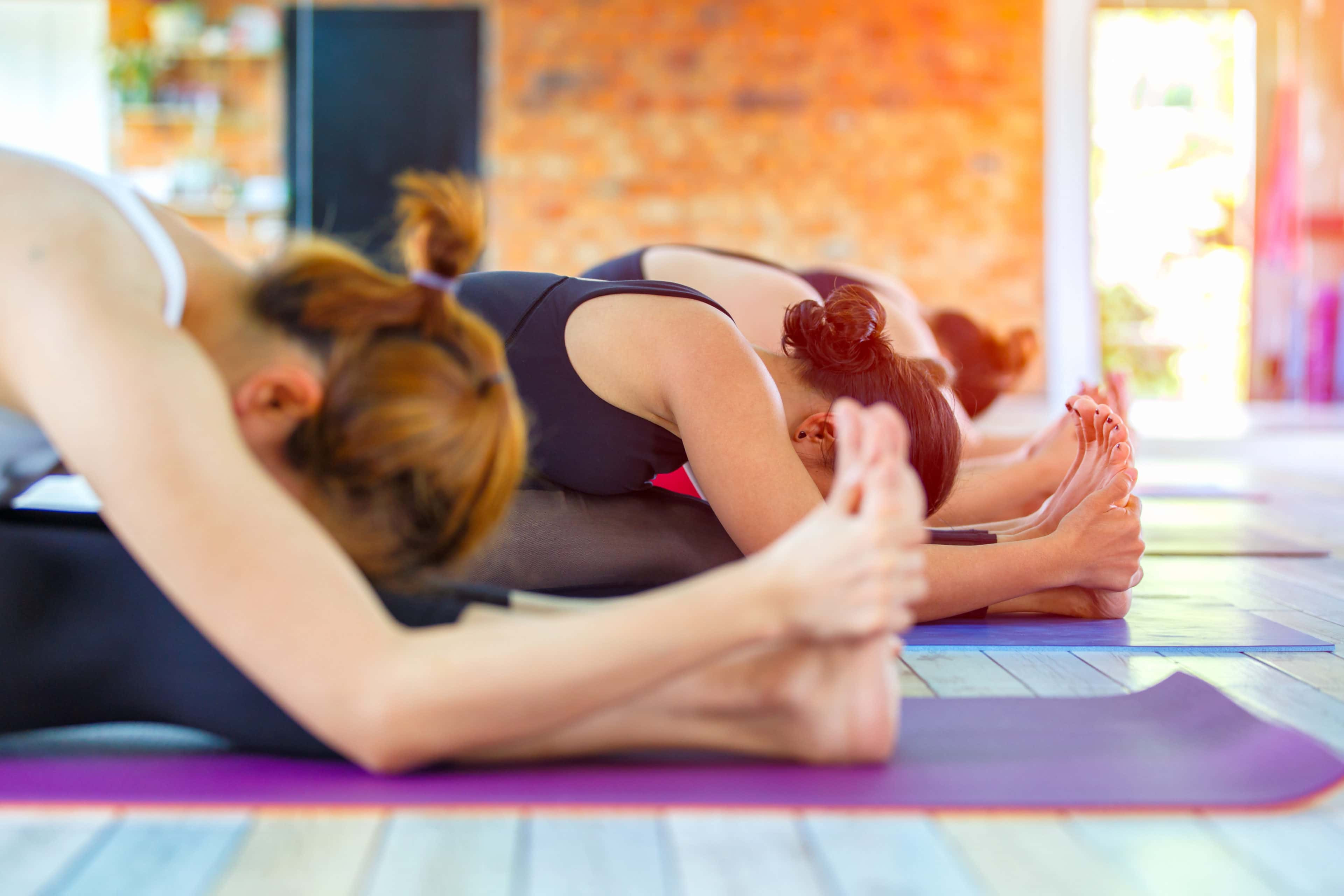 Group Yoga (5+ People) Session