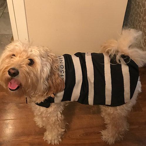 Prisoner Kostümü