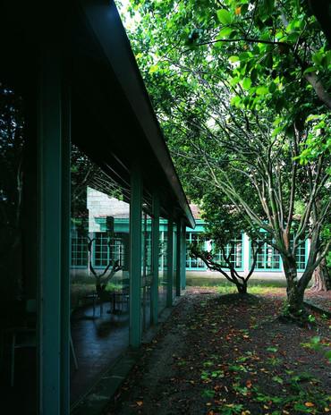 Rehabilitación Isla San Simón
