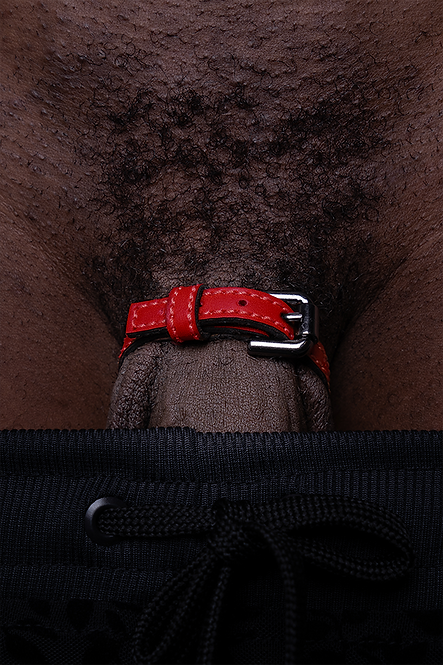 Cock Ring Belt Red