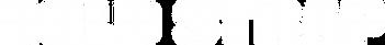 logo_boldstrap_b.png