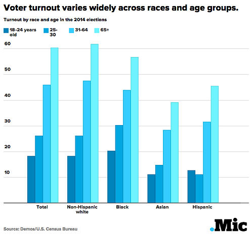 voter turnout Why Vote.jpg