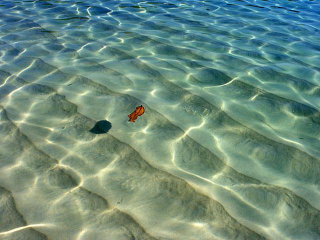 angra-dos-reis-praiadodentista-606-G.jpg