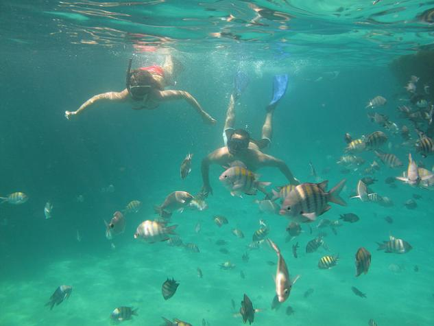 foto-subaquatica-na-lagoa-azul-passeio-angra-e-ilha-grande.jpg