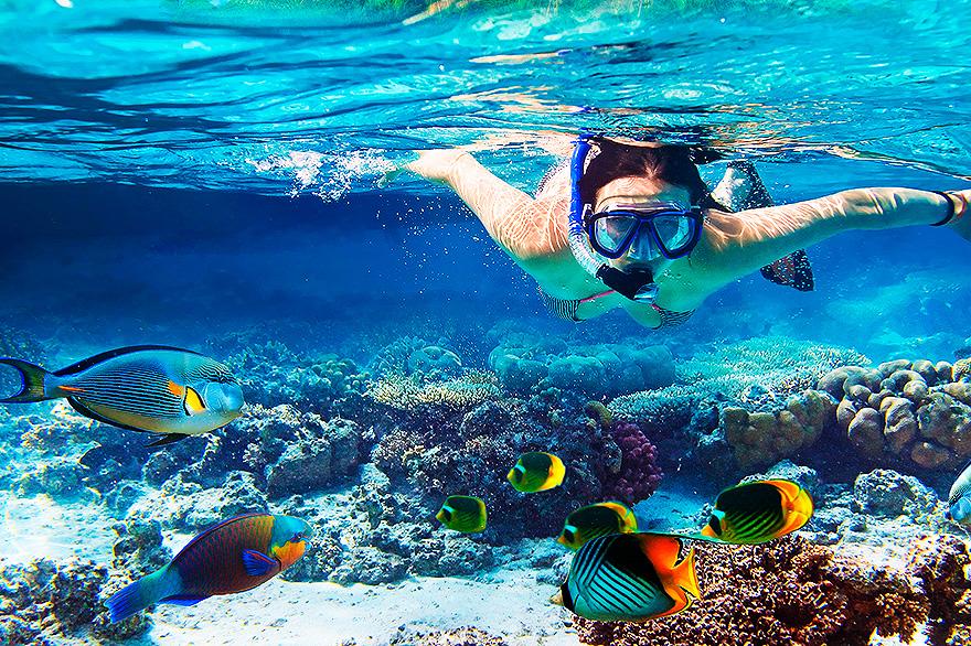 mergulho-em-ilha-grande-pousada-refugio-do-capitao-rj.jpg