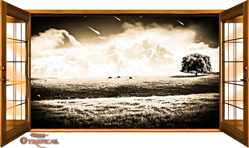 Anjos Caíram do Céu - A Janela (FAZ)