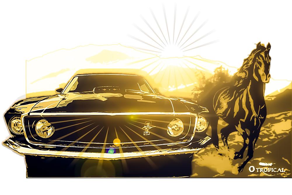 O Corcel e o Mustang - FAZ