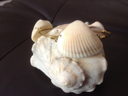 Sea Shell- OUT OF STOCK