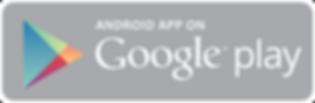 Google_Store_Logo.png