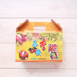 泰安李子水果手提盒
