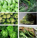 chakra food green.jpg