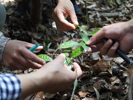 【08.04】森の学び舎開催。