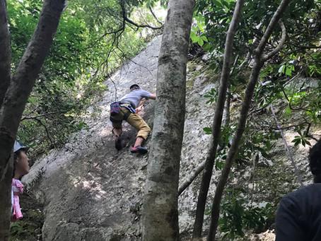 アウトドアの森:ロッククライミングと森づくり