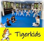 Tigerkids_neu(2).jpg
