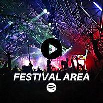 FESTIVAL AREA NEW.jpg