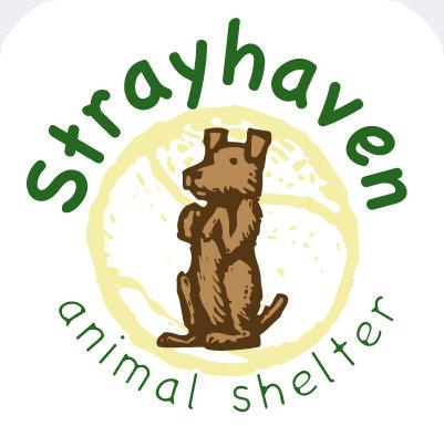 ADOPT| STRAYHAVEN ANIMAL SHELTER GREENVILLE , PA 16125