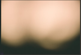 CORPUS X LEA 5.jpg